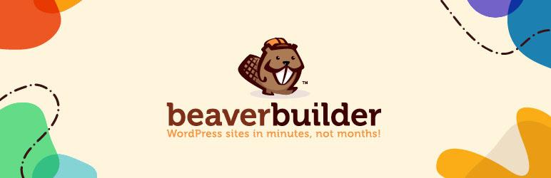 beaver builder 772x250